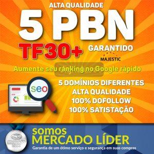 5 PBN Exclusiva Seo TF30+ (Garantido) Alta Autoridade Dofollow